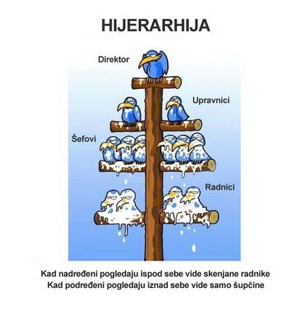 Hijerarhija